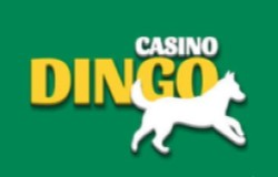 Dingo Singapore casino
